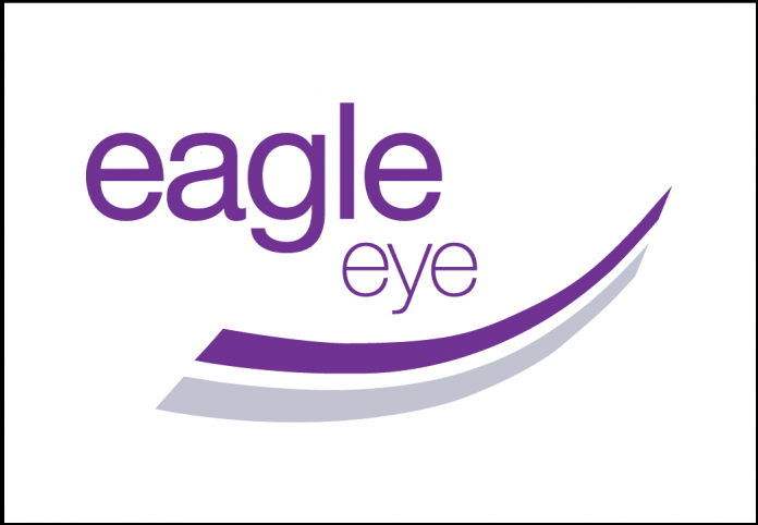 Eagle Eye Solutions EYE Logo